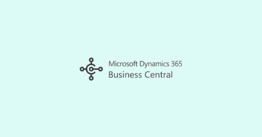 Business Central User Licenses