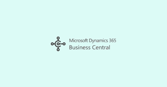Business Central User Licenses